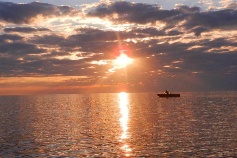 Käivitus Eesti mereala planeeringute keskkonnamõjude strateegiline hindamine