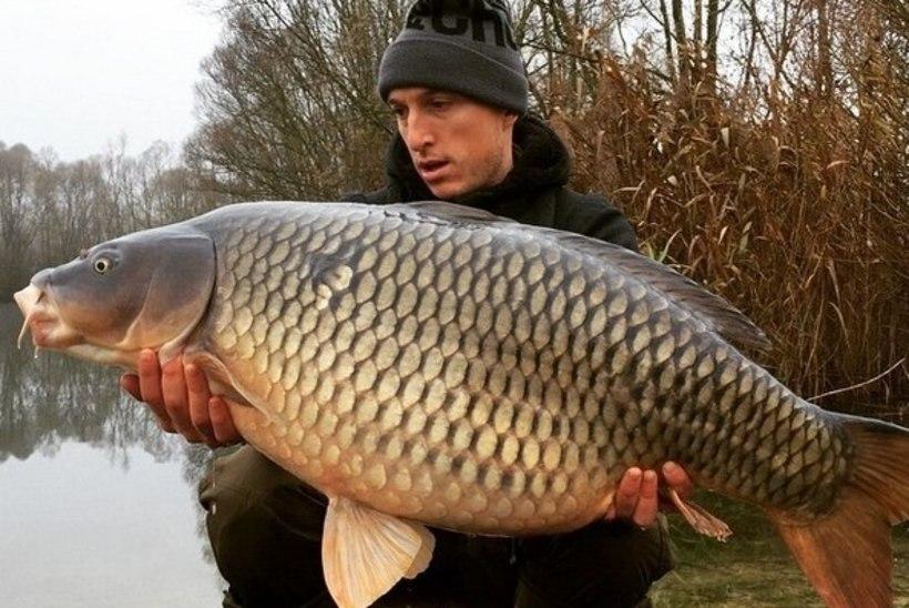 """FOTO: """"Inglismaa Piiroja"""" püüdis hiiglasliku kala!"""