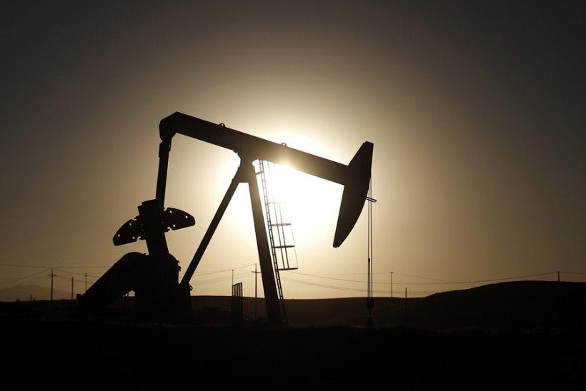 Pank: nafta hind langeb jälle