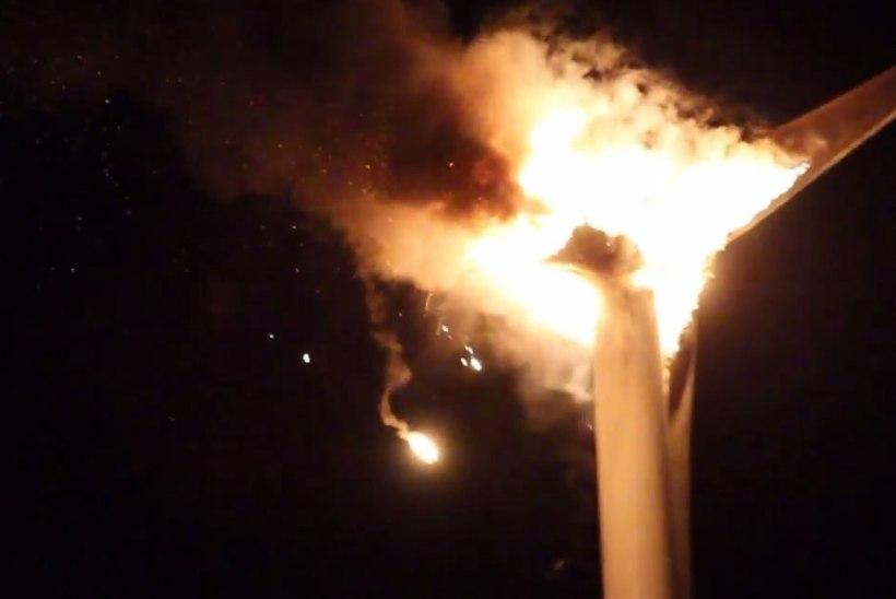 VIDEO: Virumaal põles maha kolm miljonit eurot maksnud tuulegeneraator