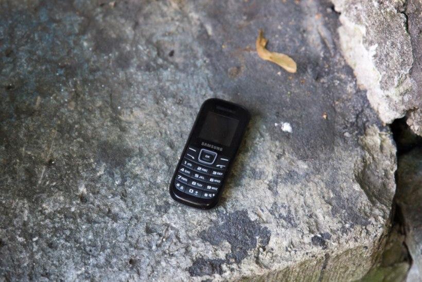 Ettevaatust! Mobiiltelefonilt saad rohkem pisikuid kui prill-laualt
