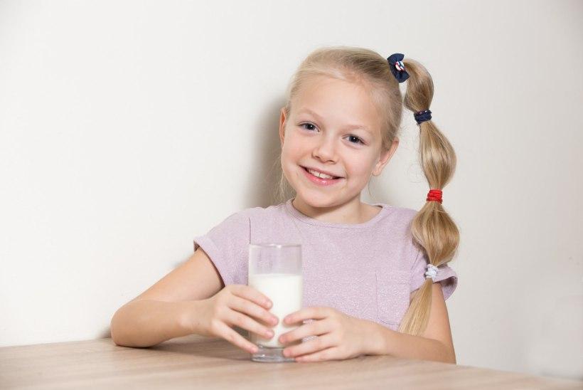 Laps peaks parema tervise nimel piirduma kahe klaasi piimaga päevas