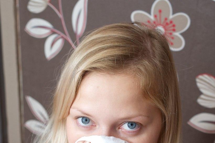 Mis põhjustab allergilist nohu?