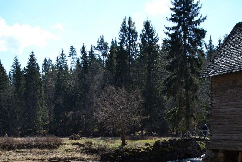 Avasta Eestimaad: alternatiiv Võhandu maratonile
