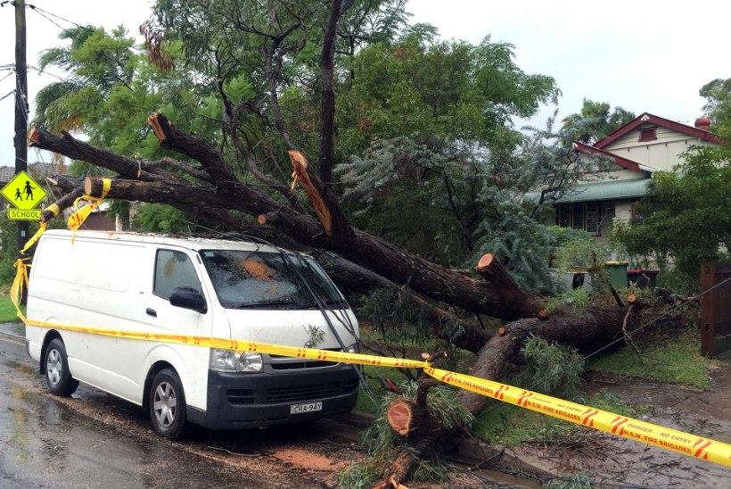 Austraaliat räsivas tormis on surma saanud kolm inimest