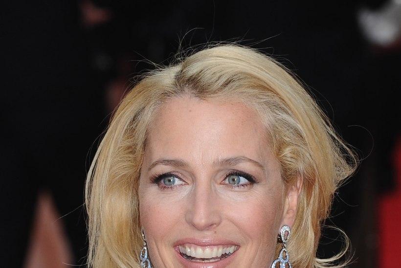 Gillian Anderson himustab Chris Martinit