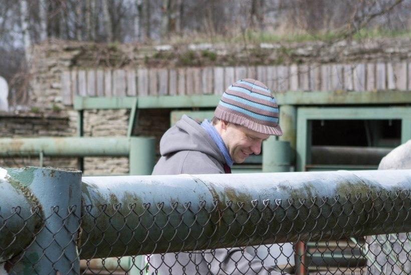 """Mati Kaal jätkab loomaaia juhina: """"Vaatan, kuidas tervis vastu peab."""""""