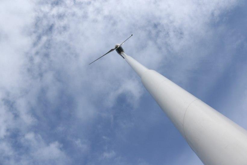 Elektri odav börsihind viis Eesti elektrisüsteemi märtsis defitsiiti