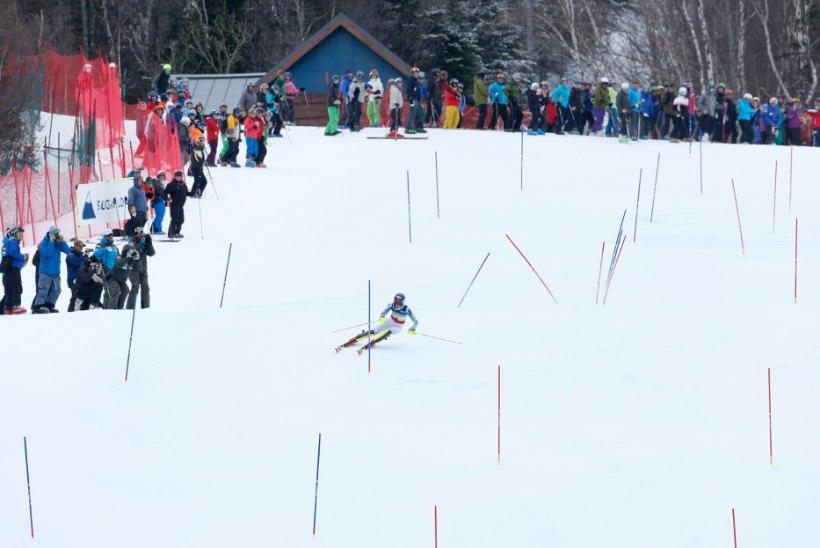 Tormis Laine jõudis suurel laste mäesuusavõistlusel esitosinasse