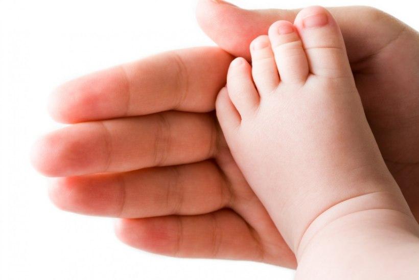 Lastefond annab kliinikumile üle annetajate toel soetatud ultraheliaparaadi
