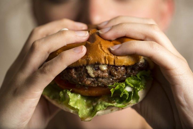 Rämpstoit tapab rasvumisvastased soolebakterid