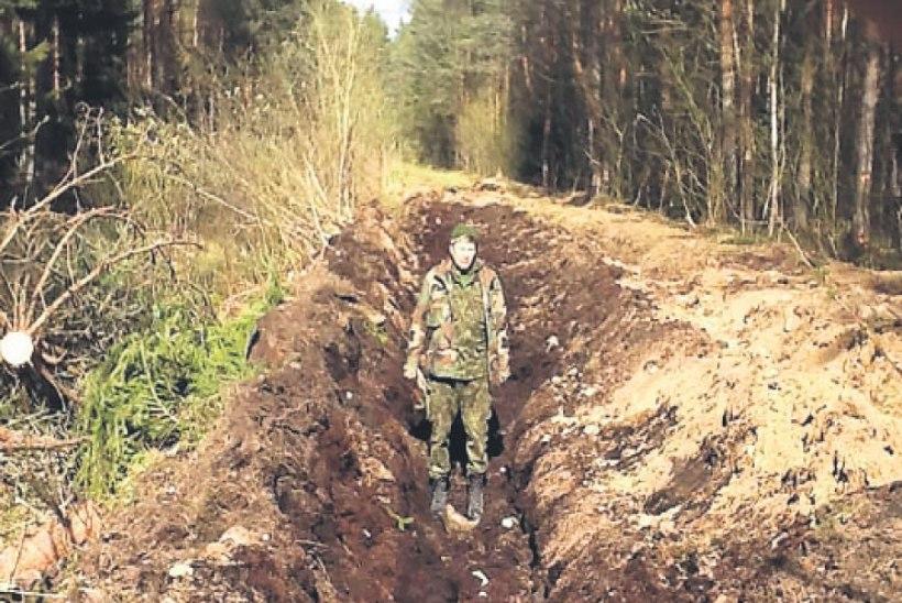 """""""Siili"""" pahupool on pahupidi keeratud mets"""