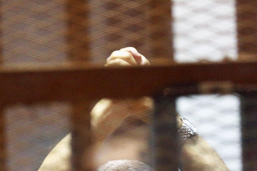 Euroopa Liit: Mursit ei tohi hukata