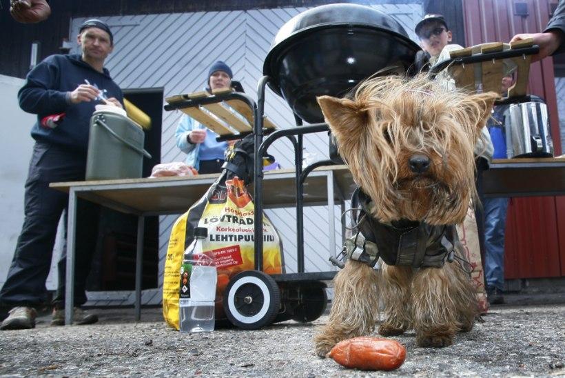 Riigikogulane päästis oma koera elu