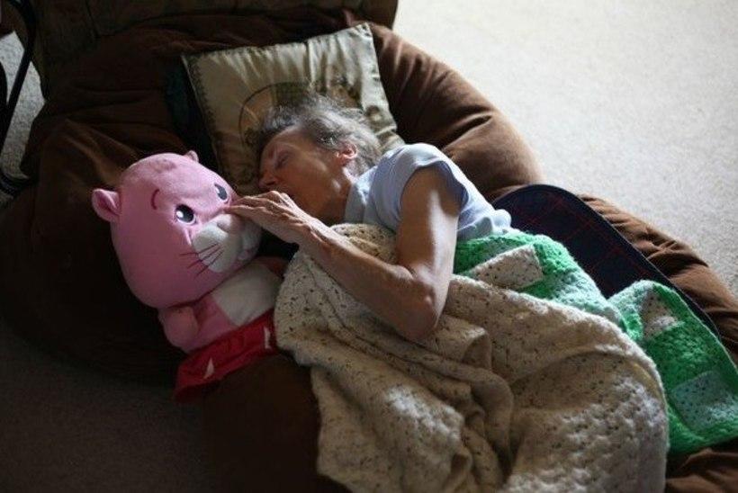 KURB, AGA EHE: poeg tegi emast 11 tabavat fotot, mis ilmestavad dementsuse hävitustööd