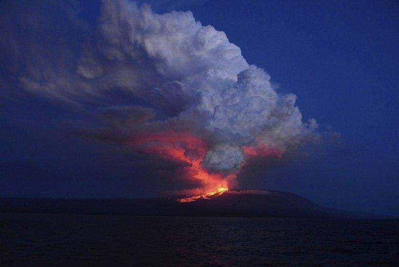 FOTOD   Darwinit inspireerinud saared ohus: Galápagosel hakkas purskama vulkaan