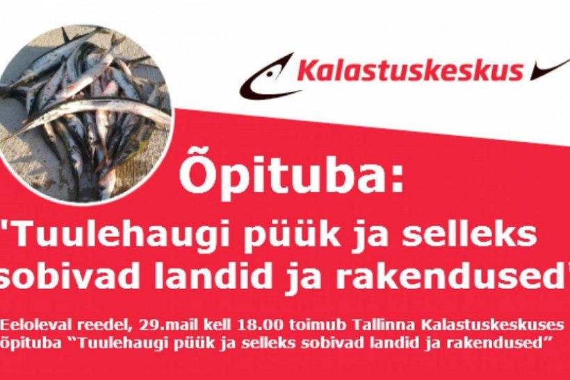 Sel nädalal õpituba Tallinna Kalastuskeskuses!