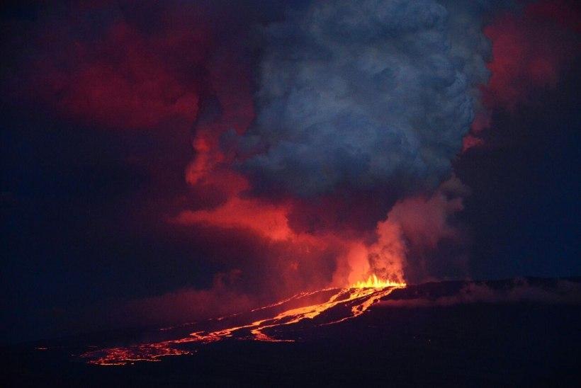 FOTOD | Darwinit inspireerinud saared ohus: Galápagosel hakkas purskama vulkaan