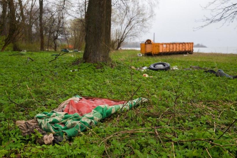 """GALERII: """"Teeme Ära"""" talgupilte Tallinnast Kopli liinidelt"""