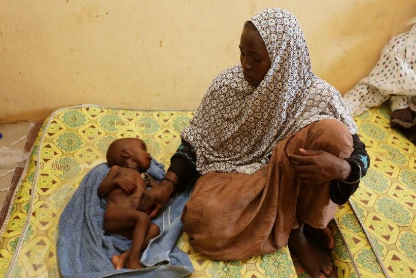 ÜRO: päästetud naised on rasedad