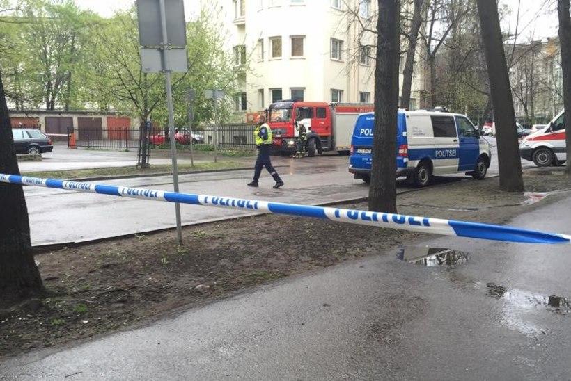 FOTOD   Demineerijad uurisid Tallinna kesklinnas põõsast leitud kohvrit