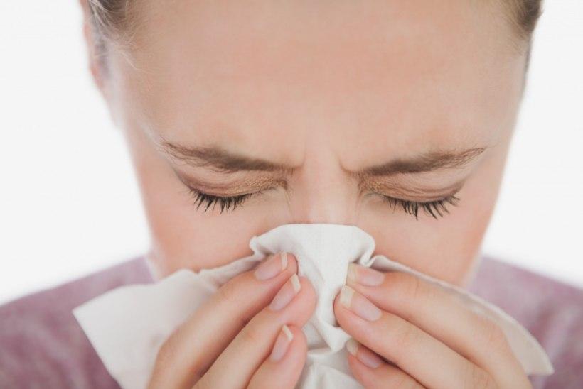 Peata allergia!