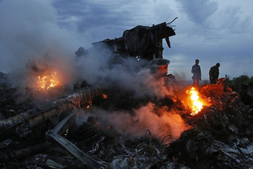 Eradetektiiv: leidsin mehe, kes teab tõde MH17 allatulistamisest