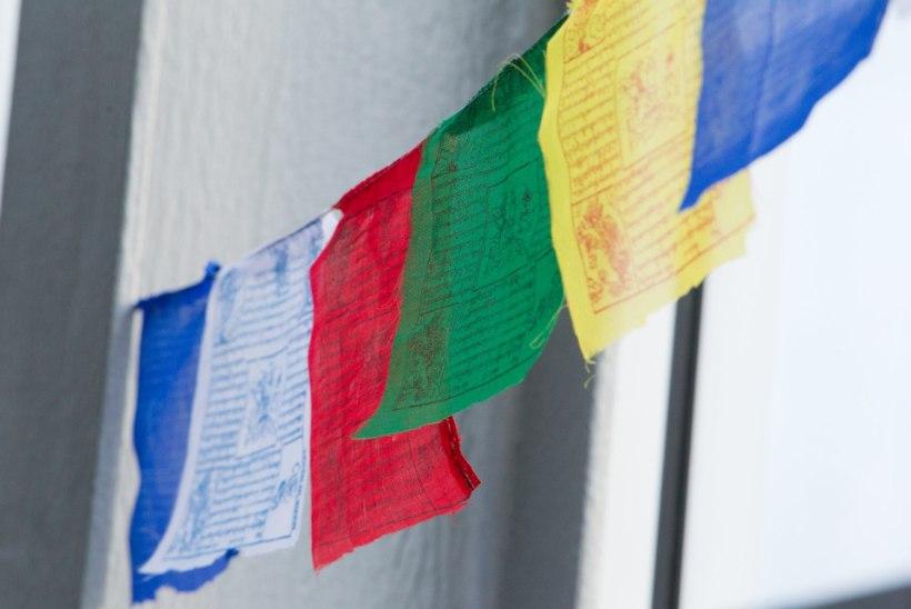 GALERII   Lenna, Liisi Koikson, Siiri Sisask, Ott Lepland jt esinesid Nepali heaks