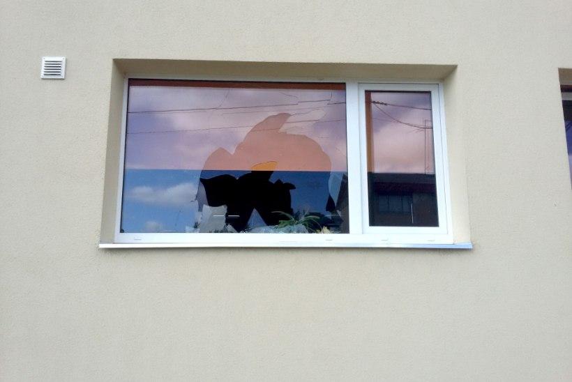 FOTO | Varjupaigataotlejate keskuse aken visati sisse