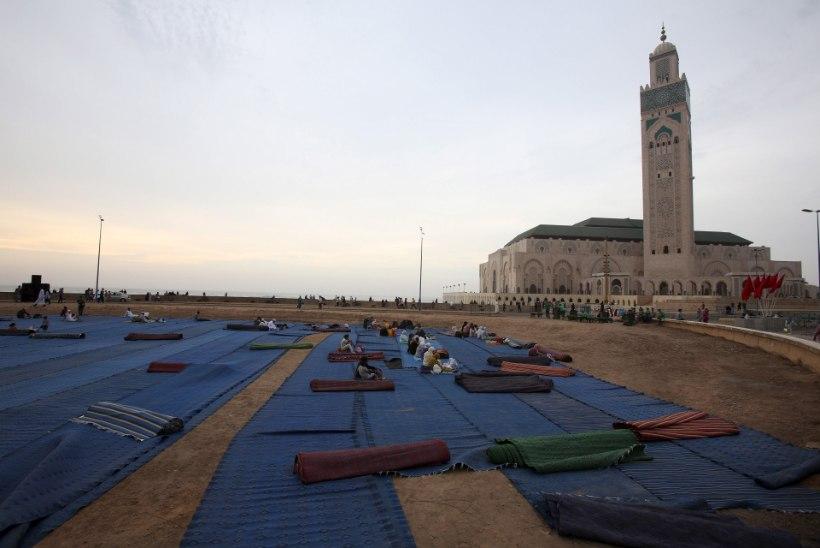 Hiir tekitas Maroko mošees paanika