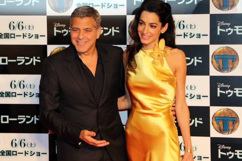 George Clooney abikaasa Amal kõhnub tähelepanukoorma all