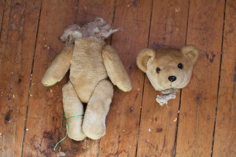 Inglismaal paljastas end pedofiil, kes soovis lastega seksimise seadustamist