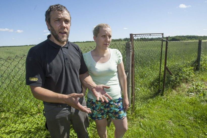 """""""Kas pean tõesti naabrinaise loomade pärast oma viljapõldudele aedu ümber ehitama hakkama?"""""""