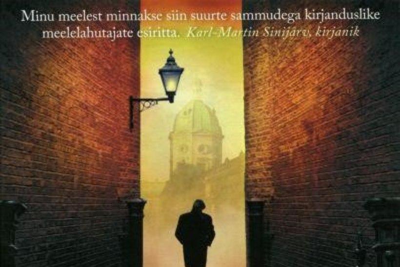 """Robert Galbraithi ehk J. K. Rowlingu """"Siidiuss"""" – ettearvamatu ajuragistaja"""