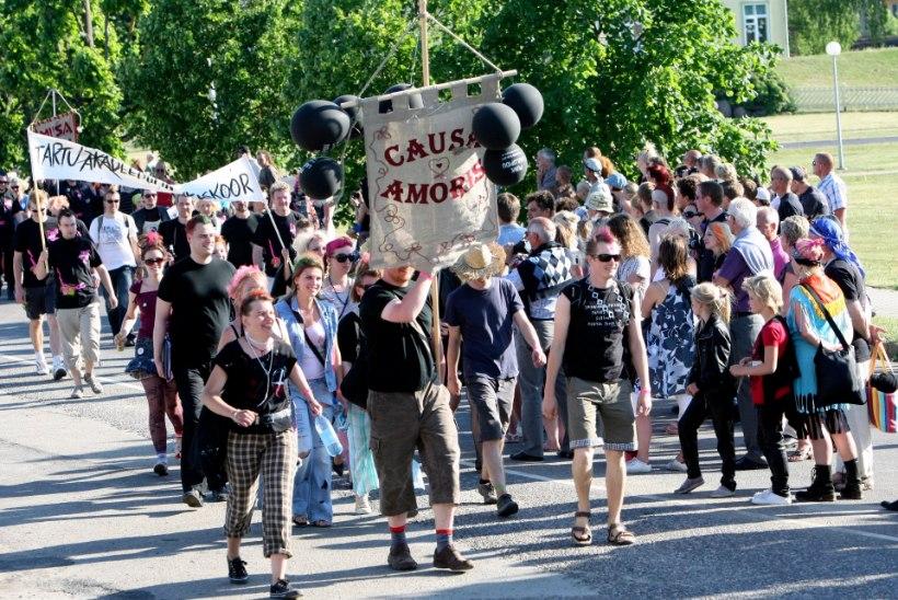 Punksimmanil keedetakse netikommentaator seebiks