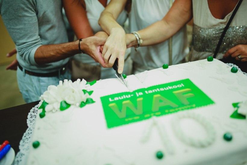 SUUR GALERII | Vaata, kes käisid WAF-i 10. sünnipäevapeol!