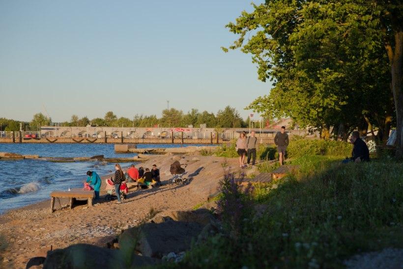 Kalamaja muutuste pöörises: koos ehedusega kaovad ka boheemlased
