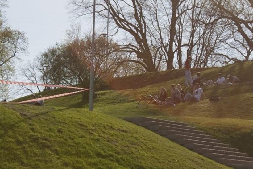 Tallinnas avatakse Linnapea pink