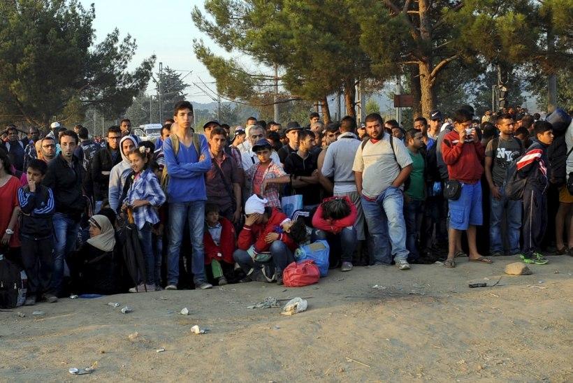 GALERII PIIRILT | Makedoonia kutsub immigrantide voolu ohjeldamiseks appi sõjaväe