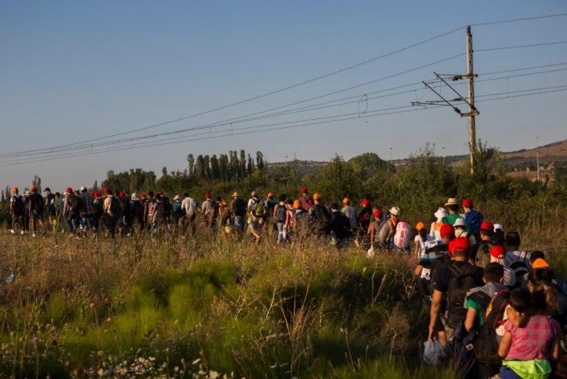 ÜRO: Euroopa Liit ei tegele põgenikeprobleemiga piisavalt
