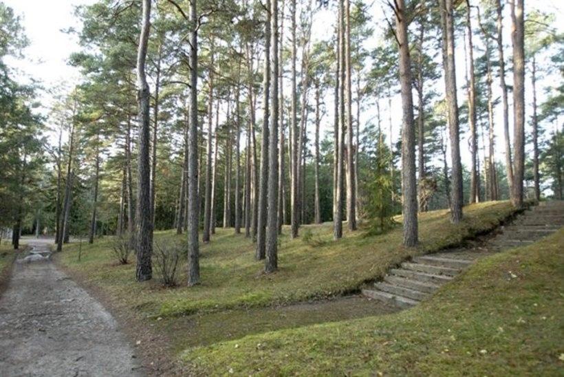 Riigikogulaste hauaplatside planeeringule Metsakalmistul on ette nähtud 960 eurot