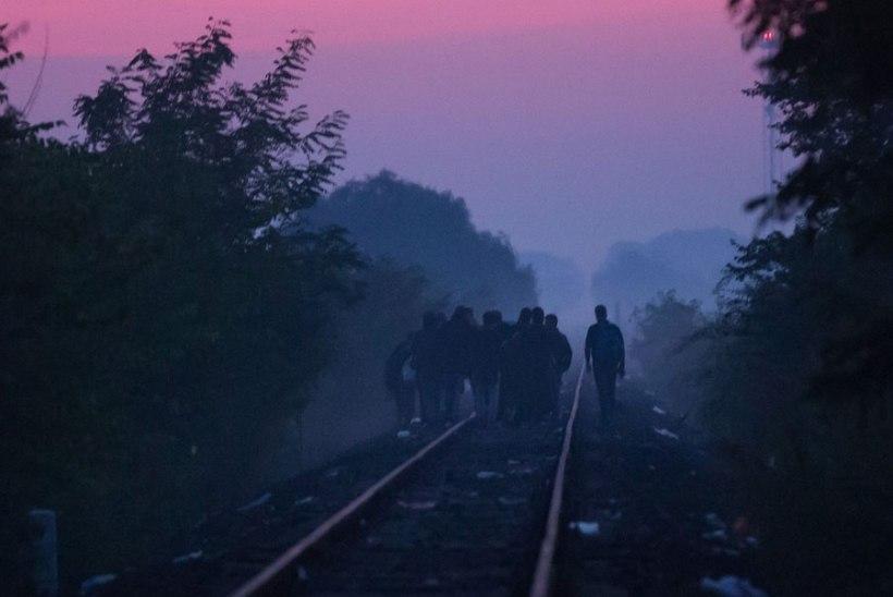 Euroopa Liit kutsub migratsioonikriisi pärast kokku erakorralise nõupidamise