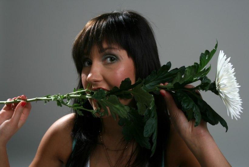 Mediteeri lillevars hambus ehk mida soovitab rahvameditsiin peavalu leevendamiseks