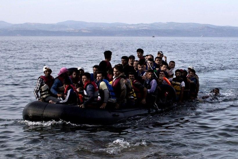 Eesti mees Kosi saarel nähtud pagulastest: suurem osa ei jäta abivajaja muljet