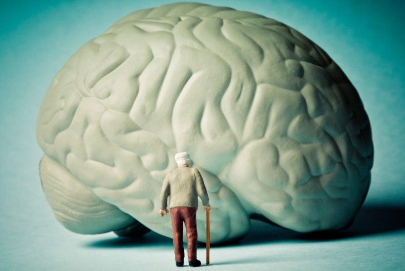 Teadlased: Alzheimer võib nakata