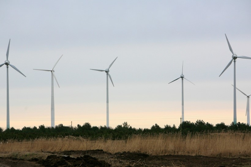 Sõnajalad rajavad Ida-Virumaale Baltikumi suurima tuulepargi