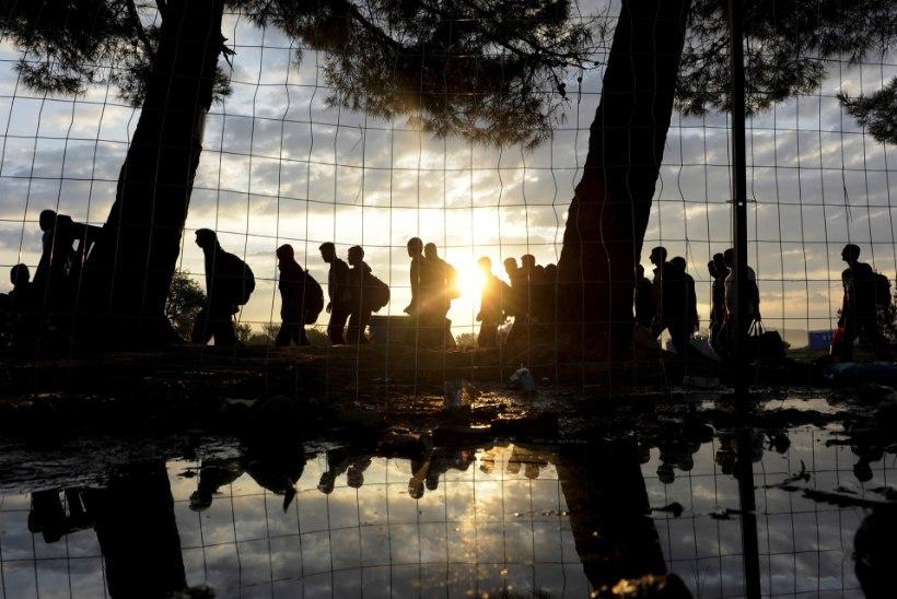 Euroopa vaevleb põgenikekriisis