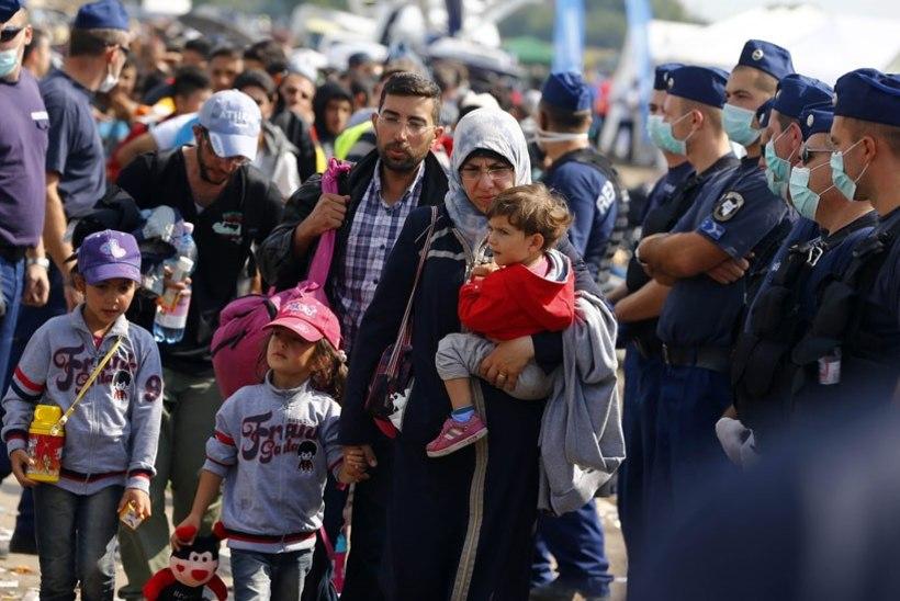 Epidemioloogianõunik Kutsar: Euroopasse saabunud pagulastel on tuvastatud kümmekond erinevat nakkushaigust
