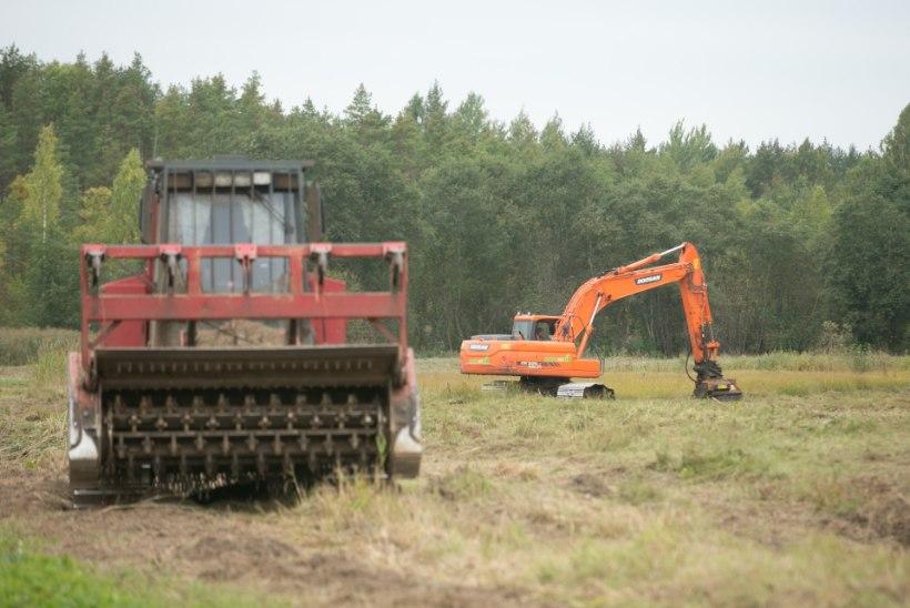 Eesti-Vene piiriribast on puhastatud 91 kilomeetrit