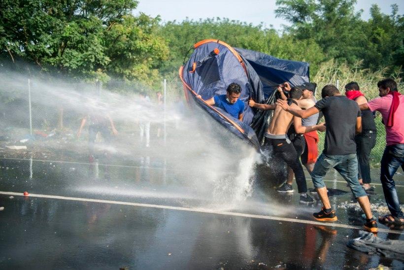 FOTOD JA VIDEO | Ungari märulipolitsei võttis agressiivsete migrantide vastu kasutusele veekahuri ja pisargaasi